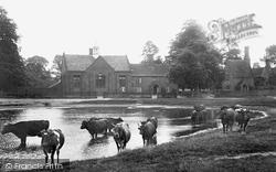 Pond And Schools 1907, Brampton