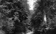 Bramshott, Bramshott Lane 1901