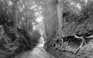 Bramshott, Rectory Lane 1932