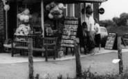 Brean, Choosing Postcards, Sunnyholt Caravan Park c.1965