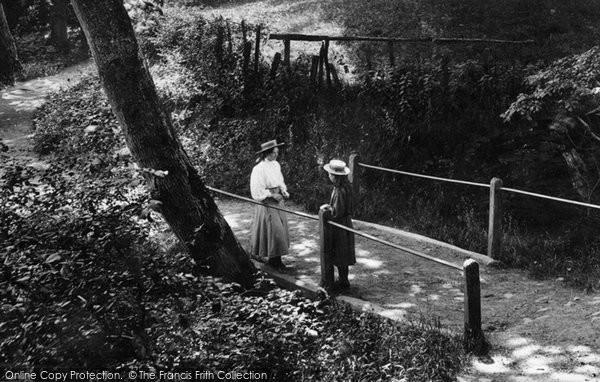 Brecon, Girls 1910