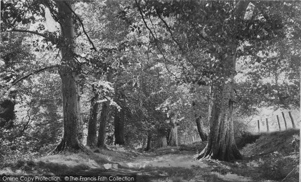 Brecon, The Groves  c.1965