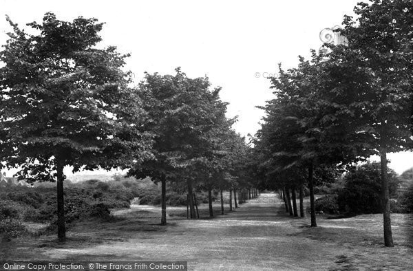 Brentwood, Shenfield Common Avenue 1921