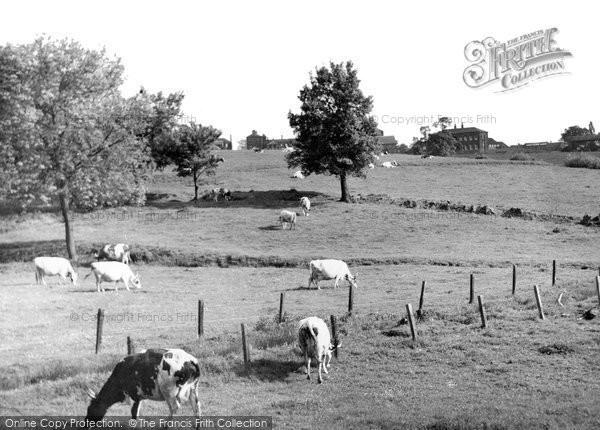 Brentwood, The Meadows And St Faith's Hospital c.1955