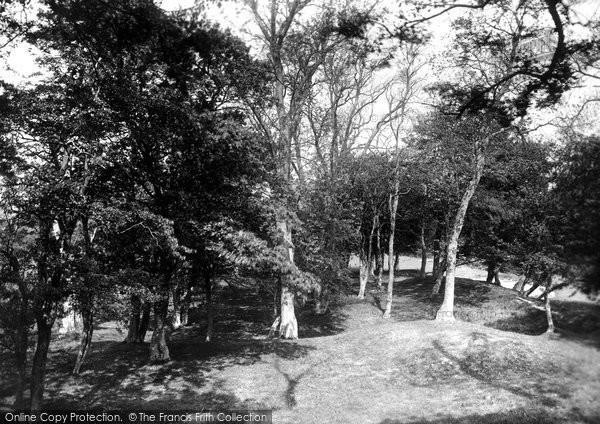 Bridge, Old England's Hole 1903