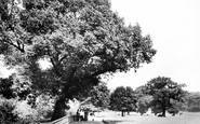 Brixton, Brockwell Park, View From Hall 1899