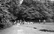 Brockenhurst, The Foxhounds At Balmer Lawn 1954