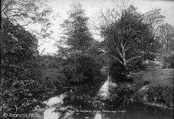 Brockham, From Footbridge 1900