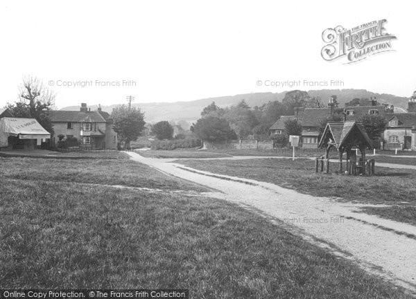 Brockham, The Green c.1905