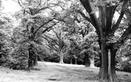 Bromsgrove, Dodderhill Common c1955