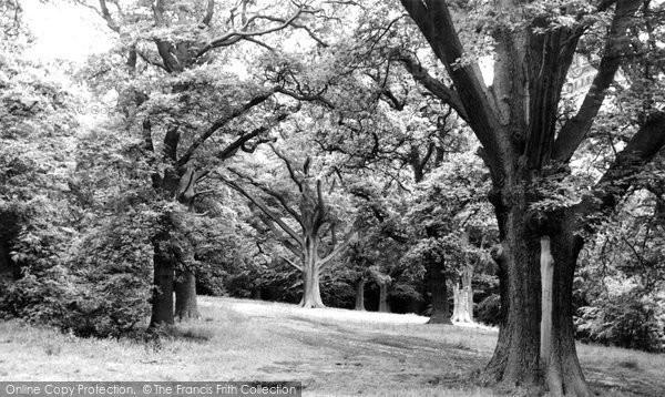 Photo of Bromsgrove, Dodderhill Common c1955