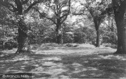 Bromsgrove, Dodderhill Common c.1965
