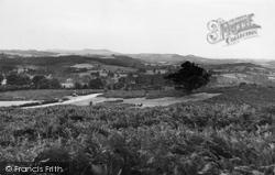 Bringsty Oak c.1955, Bromyard