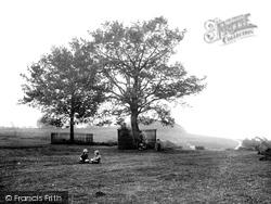 Jubilee Oaks On Downs 1923, Bromyard