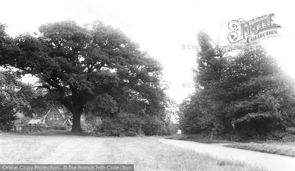 Broxbourne photo