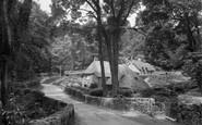 Buckland in the Moor photo