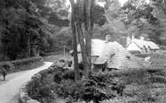Buckland In The Moor, The Village 1931