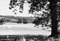 Buckland, North Downs c.1955