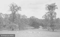 Park c.1965, Buckland