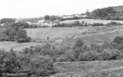 Buckland St Mary, General View c.1960