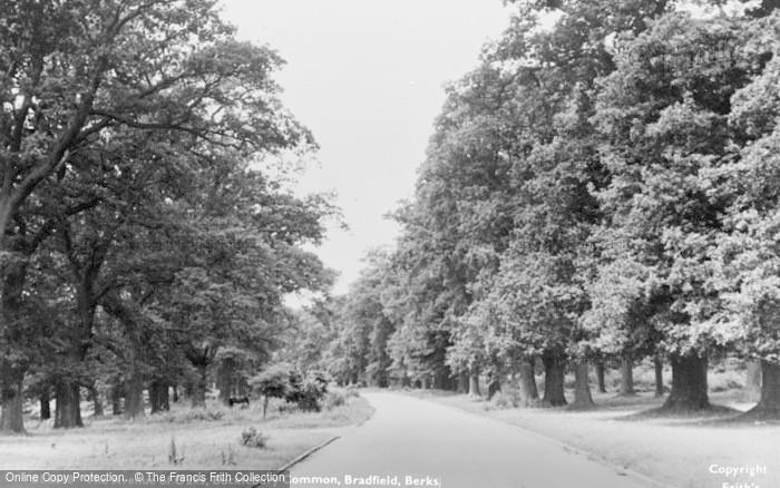 Bucklebury photo