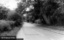 Bucks Green, The Village c.1965