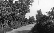 Bulphan, Church Lane c.1955