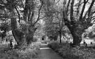 Buntingford, Layston Church Avenue 1922
