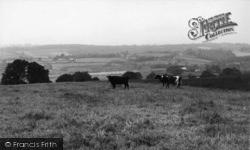 Burgess Hill, General View c.1960