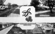 Burgh Castle, Cherry Farm Caravan Park, Composite c.1965