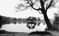 The Pond c.1960, Burgh Heath