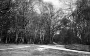 Burley, Anderwood c.1955