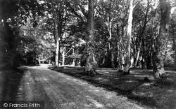 Burley, Bisterne Close c.1960