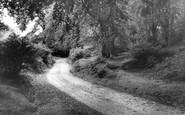Burley, Shappen Bottom c.1955