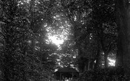 Burnham-on-Sea, Manor Gardens, A Shady Walk 1913