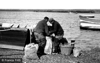 Burnham Overy Staithe, Packing Mussels c1955