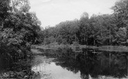 Burnham, Pond At Burnham Beeches 1896