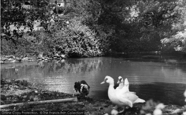 Photo of Burwash, The Pond, School Lane c.1960
