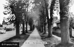 Burwell, The Causeway c.1960