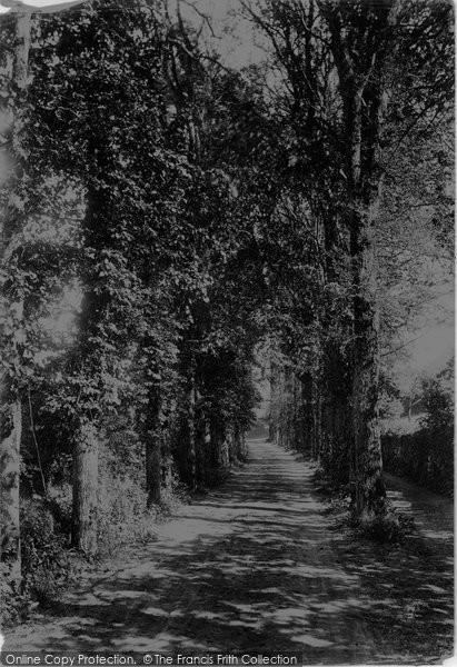 Buryas Bridge, The Avenue 1893
