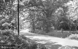 Butley, Staverton c.1955