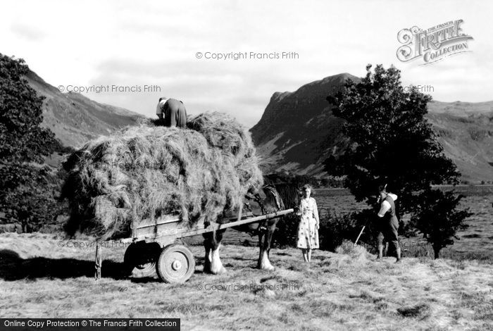 Buttermere, Haymaking c1955