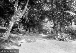 Buxton, In Corbar Woods 1915
