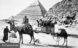 A Camel Palanquin c.1935, Cairo