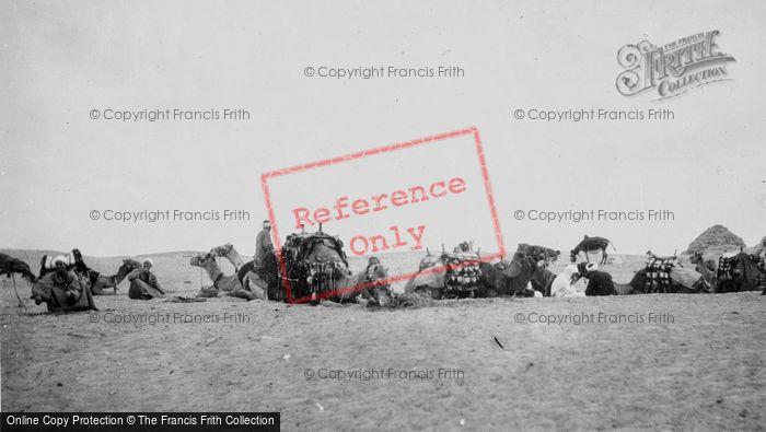 Photo of Cairo, A Desert Caravan At Rest c.1935