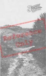 A Country Lane c.1955, Caldey Island