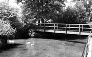 Calne, Doctors Pond c1965