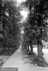 Calne, Wessington Avenue c.1960