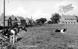 Corra Place c.1955, Calverhall