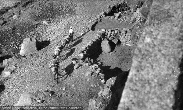 Photo of Camara De Lobos, String Of Mules c.1955